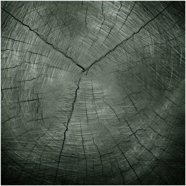 HTI-Line Tree Glasbild